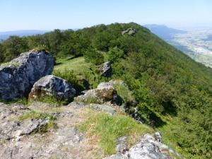 LABARGAIN (1153m)