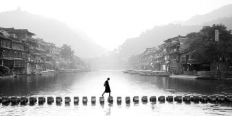 1º Premio - Fenhuang