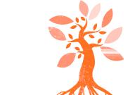 logo-gipuzkoa-solidarioa